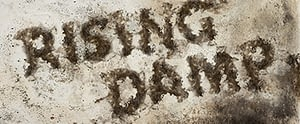 Rising Damp Surveyor Lancashire