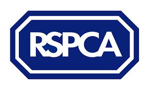 RSPCA Surveying Accrington